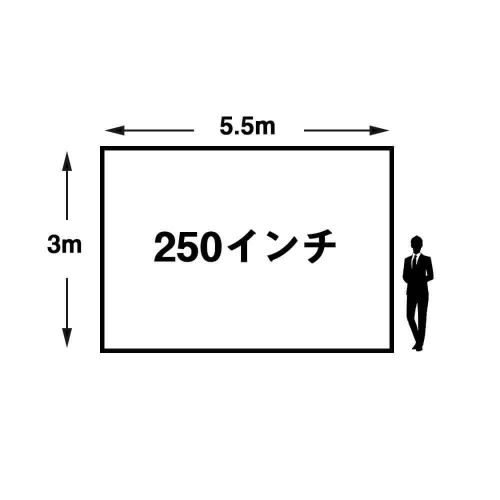 250インチ